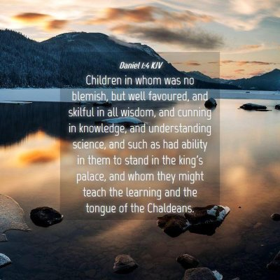 Picture 04 - Daniel 1:4 KJV - Children in whom was no blemish, but well - Bible Verse Picture