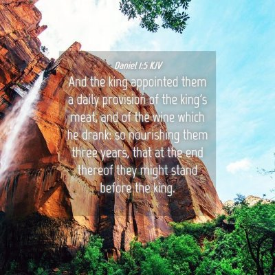 Picture 04 - Daniel 1:5 KJV - And the king appointed them a daily provision of - Bible Verse Picture
