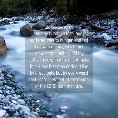 Picture 04 - Deuteronomy 8:3 KJV - And he humbled thee, and suffered thee to hunger, - Bible Verse Picture