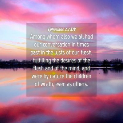 Picture 04 - Ephesians 2:3 KJV - Among whom also we all had our conversation in - Bible Verse Picture