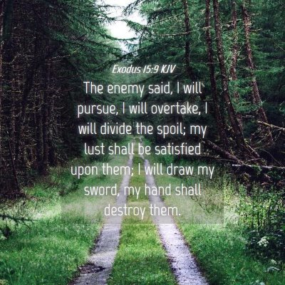 Picture 04 - Exodus 15:9 KJV - The enemy said, I will pursue, I will overtake, I - Bible Verse Picture