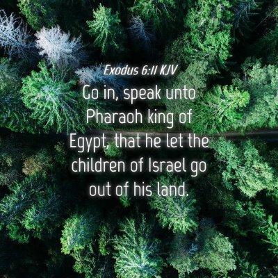 Picture 04 - Exodus 6:11 KJV - Go in, speak unto Pharaoh king of Egypt, that he - Bible Verse Picture