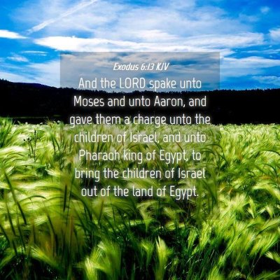 Picture 04 - Exodus 6:13 KJV - And the LORD spake unto Moses and unto Aaron, and - Bible Verse Picture