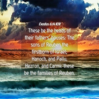 Picture 04 - Exodus 6:14 KJV - These be the heads of their fathers' houses: The - Bible Verse Picture