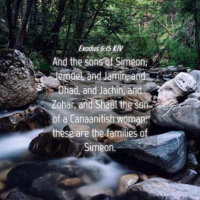 Picture 04 - Exodus 6:15 KJV - And the sons of Simeon; Jemuel, and Jamin, and - Bible Verse Picture