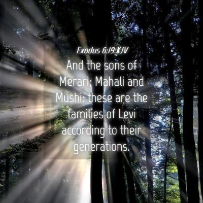 Picture 04 - Exodus 6:19 KJV - And the sons of Merari; Mahali and Mushi: these - Bible Verse Picture