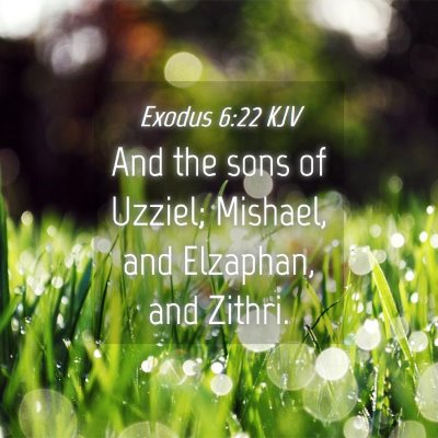 Picture 04 - Exodus 6:22 KJV - And the sons of Uzziel; Mishael, and Elzaphan, - Bible Verse Picture