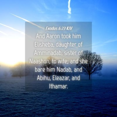 Picture 04 - Exodus 6:23 KJV - And Aaron took him Elisheba, daughter of - Bible Verse Picture