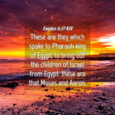 Picture 04 - Exodus 6:27 KJV - These are they which spake to Pharaoh king of - Bible Verse Picture