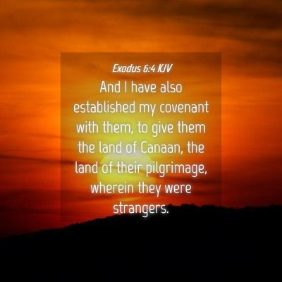 Picture 04 - Exodus 6:4 KJV - And I have also established my covenant with - Bible Verse Picture