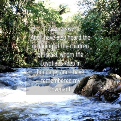 Picture 04 - Exodus 6:5 KJV - And I have also heard the groaning of the - Bible Verse Picture