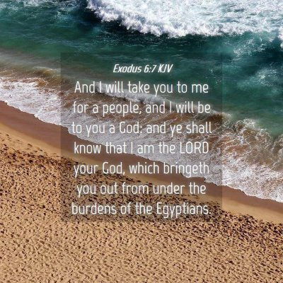 Picture 04 - Exodus 6:7 KJV - And I will take you to me for a people, and I - Bible Verse Picture
