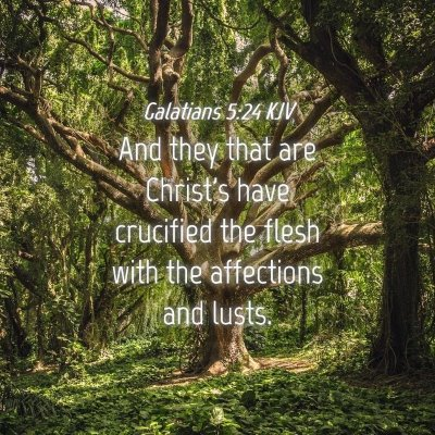 Picture 04 - Galatians 5:24 KJV - And they that are Christ's have crucified the - Bible Verse Picture