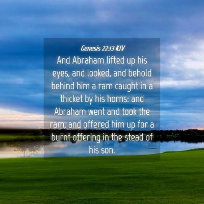Picture 04 - Genesis 22:13 KJV - And Abraham lifted up his eyes, and looked, and - Bible Verse Picture