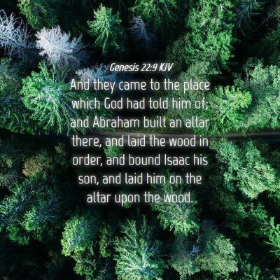 Picture 04 - Genesis 22:9 KJV - And they came to the place which God had told him - Bible Verse Picture