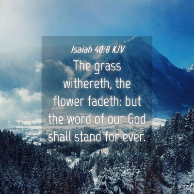 Picture 04 - Isaiah 40:8 KJV - The grass withereth, the flower fadeth: but the - Bible Verse Picture