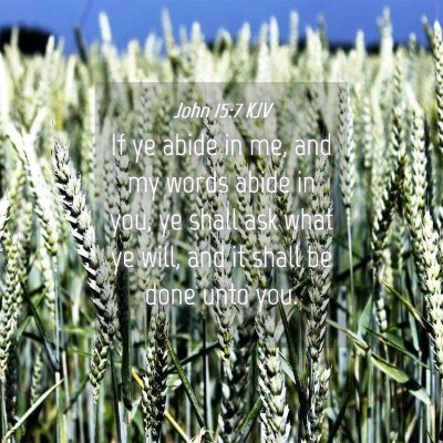 Picture 04 - John 15:7 KJV - If ye abide in me, and my words abide in you, ye - Bible Verse Picture