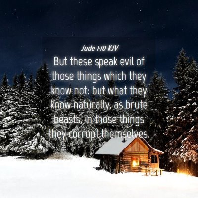 Picture 04 - Jude 1:10 KJV - But these speak evil of those things which they - Bible Verse Picture
