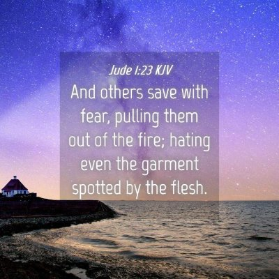 Picture 04 - Jude 1:23 KJV - And others save with fear, pulling them out of - Bible Verse Picture