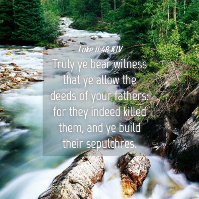 Picture 04 - Luke 11:48 KJV - Truly ye bear witness that ye allow the deeds of - Bible Verse Picture