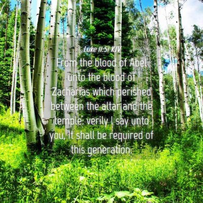 Picture 04 - Luke 11:51 KJV - From the blood of Abel unto the blood of - Bible Verse Picture
