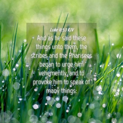 Picture 04 - Luke 11:53 KJV - And as he said these things unto them, the - Bible Verse Picture