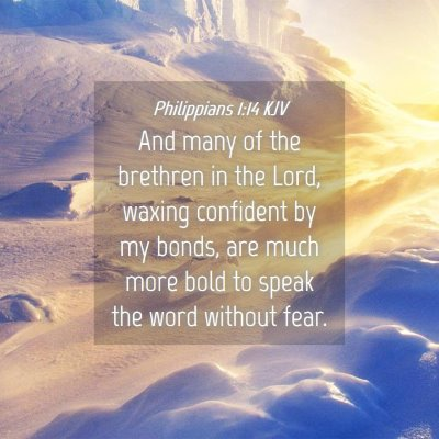 Picture 04 - Philippians 1:14 KJV - And many of the brethren in the Lord, waxing - Bible Verse Picture