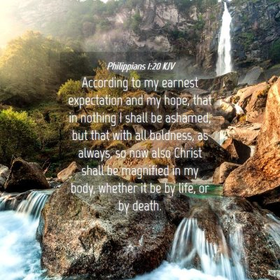 Picture 04 - Philippians 1:20 KJV - According to my earnest expectation and my hope, - Bible Verse Picture