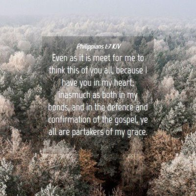 Picture 04 - Philippians 1:7 KJV - Even as it is meet for me to think this of you - Bible Verse Picture