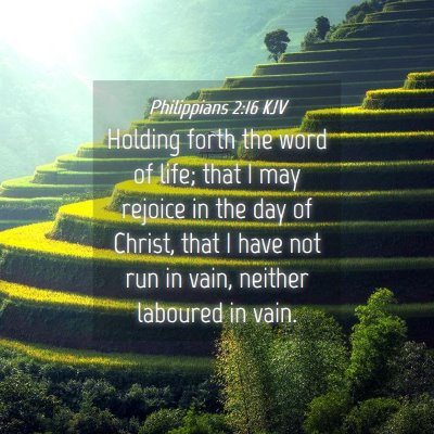 Picture 04 - Philippians 2:16 KJV - Holding forth the word of life; that I may - Bible Verse Picture
