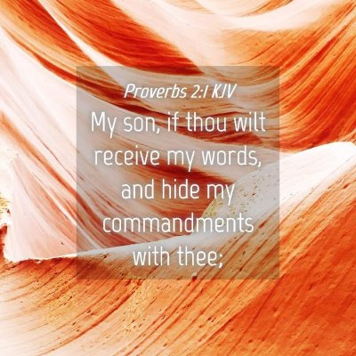 Picture 04 - Proverbs 2:1 KJV - My son, if thou wilt receive my words, and hide - Bible Verse Picture