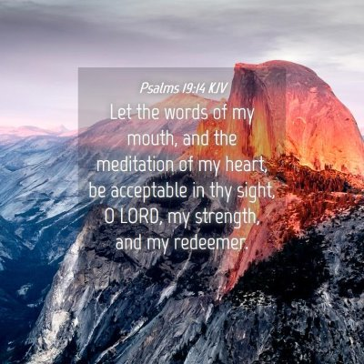 Picture 04 - Psalms 19:14 KJV - Let the words of my mouth, and the meditation of - Bible Verse Picture