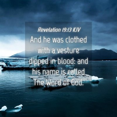 Picture 04 - Revelation 19:13 KJV - And he was clothed with a vesture dipped in - Bible Verse Picture