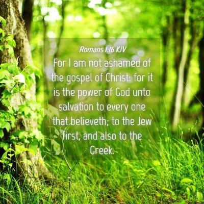 Picture 04 - Romans 1:16 KJV - For I am not ashamed of the gospel of Christ: for - Bible Verse Picture