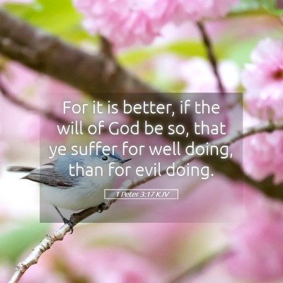 Picture 05 - 1 Peter 3:17 KJV - For it is better, if the will of God be so, that - Bible Verse Picture