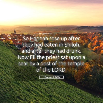 Picture 05 - 1 Samuel 1:9 KJV - So Hannah rose up after they had eaten in Shiloh, - Bible Verse Picture