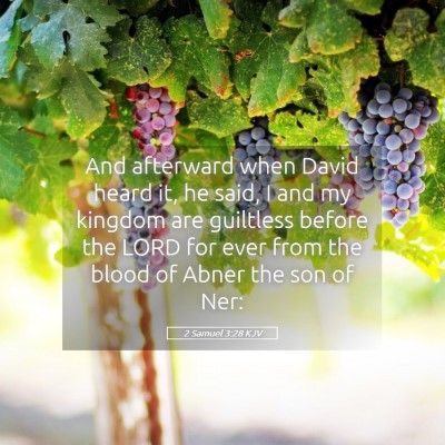 Picture 05 - 2 Samuel 3:28 KJV - And afterward when David heard it, he said, I and - Bible Verse Picture