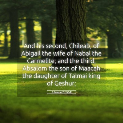 Picture 05 - 2 Samuel 3:3 KJV - And his second, Chileab, of Abigail the wife of - Bible Verse Picture