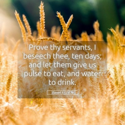 Picture 05 - Daniel 1:12 KJV - Prove thy servants, I beseech thee, ten days; and - Bible Verse Picture