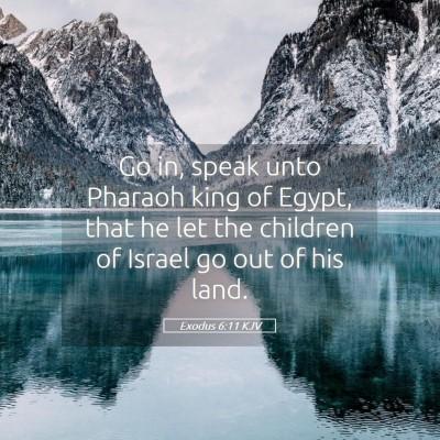 Picture 05 - Exodus 6:11 KJV - Go in, speak unto Pharaoh king of Egypt, that he - Bible Verse Picture