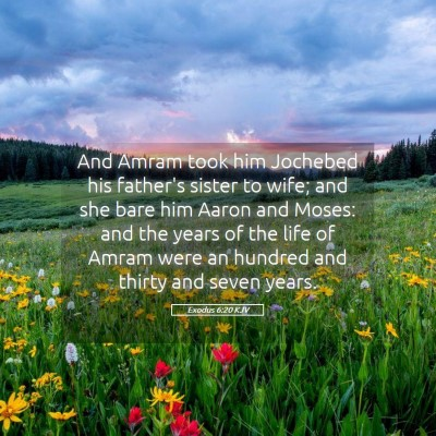 Picture 05 - Exodus 6:20 KJV - And Amram took him Jochebed his father's sister - Bible Verse Picture