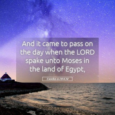 Picture 05 - Exodus 6:28 KJV - And it came to pass on the day when the LORD - Bible Verse Picture