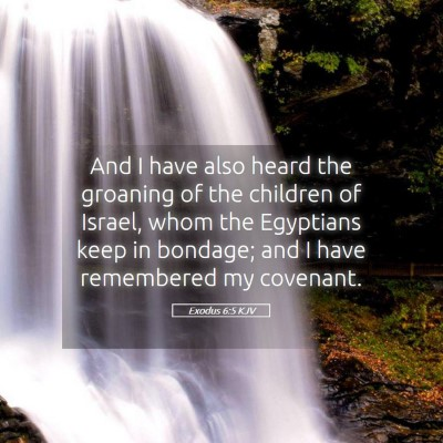 Picture 05 - Exodus 6:5 KJV - And I have also heard the groaning of the - Bible Verse Picture