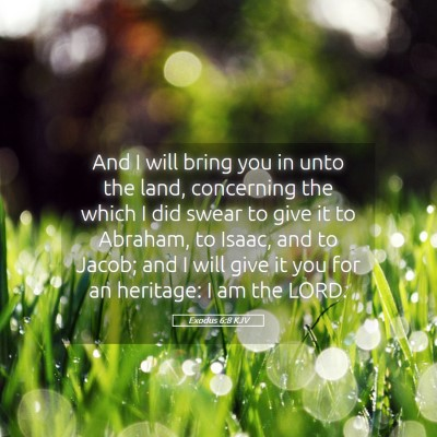 Picture 05 - Exodus 6:8 KJV - And I will bring you in unto the land, concerning - Bible Verse Picture