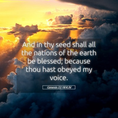 Picture 05 - Genesis 22:18 KJV - And in thy seed shall all the nations of the - Bible Verse Picture