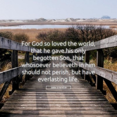 Picture 05 - John 3:16 KJV - For God so loved the world, that he gave his only - Bible Verse Picture