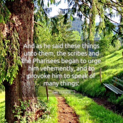 Picture 05 - Luke 11:53 KJV - And as he said these things unto them, the - Bible Verse Picture