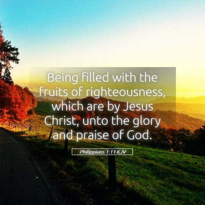 Picture 05 - Philippians 1:11 KJV - Being filled with the fruits of righteousness, - Bible Verse Picture
