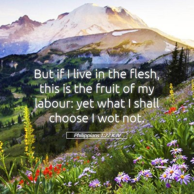 Picture 05 - Philippians 1:22 KJV - But if I live in the flesh, this is the fruit of - Bible Verse Picture