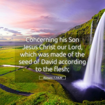 Picture 05 - Romans 1:3 KJV - Concerning his Son Jesus Christ our Lord, which - Bible Verse Picture
